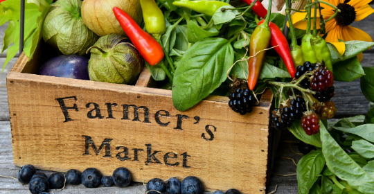 farmers_market_box