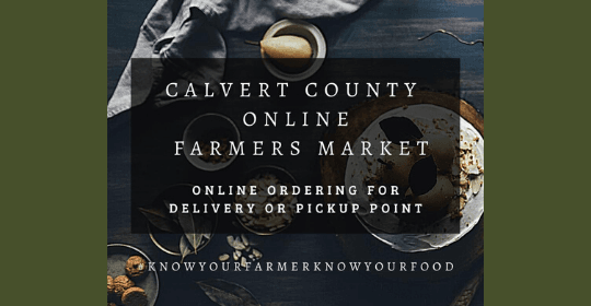Calvert_Virtual_Market